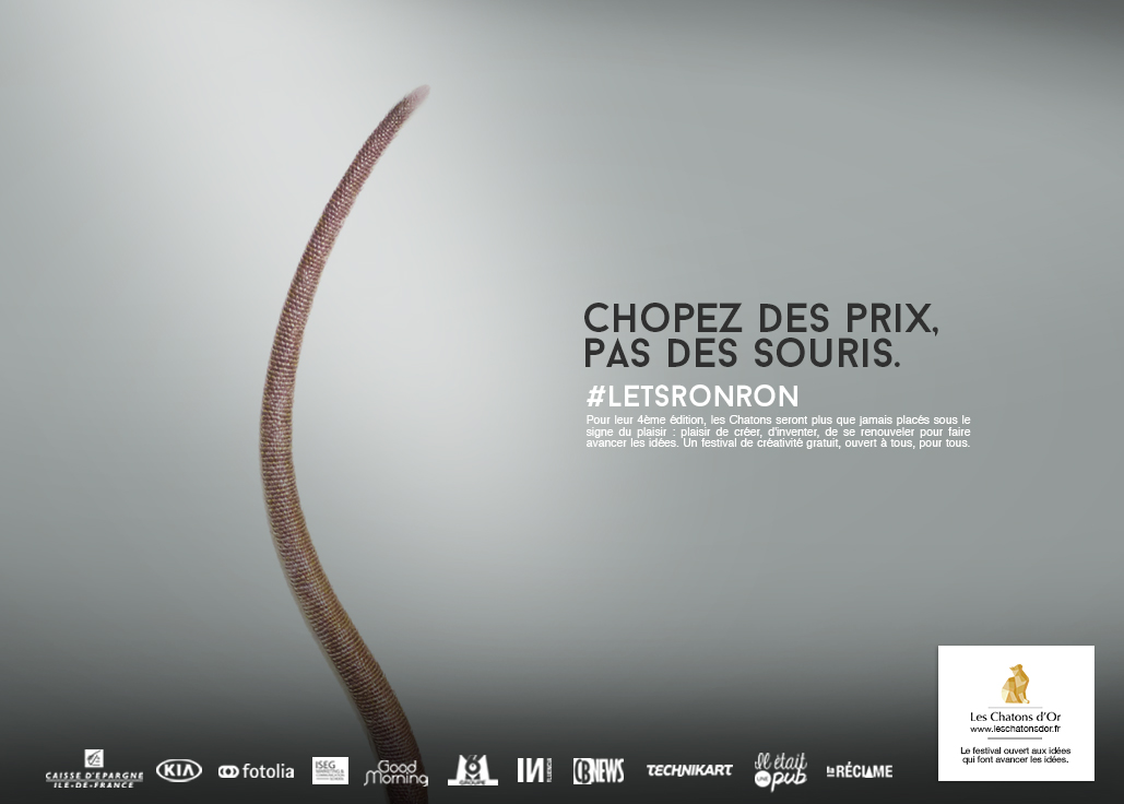 dans-ta-pub-lets-ronron-chatons-dor-2015-concours-idée-création-5