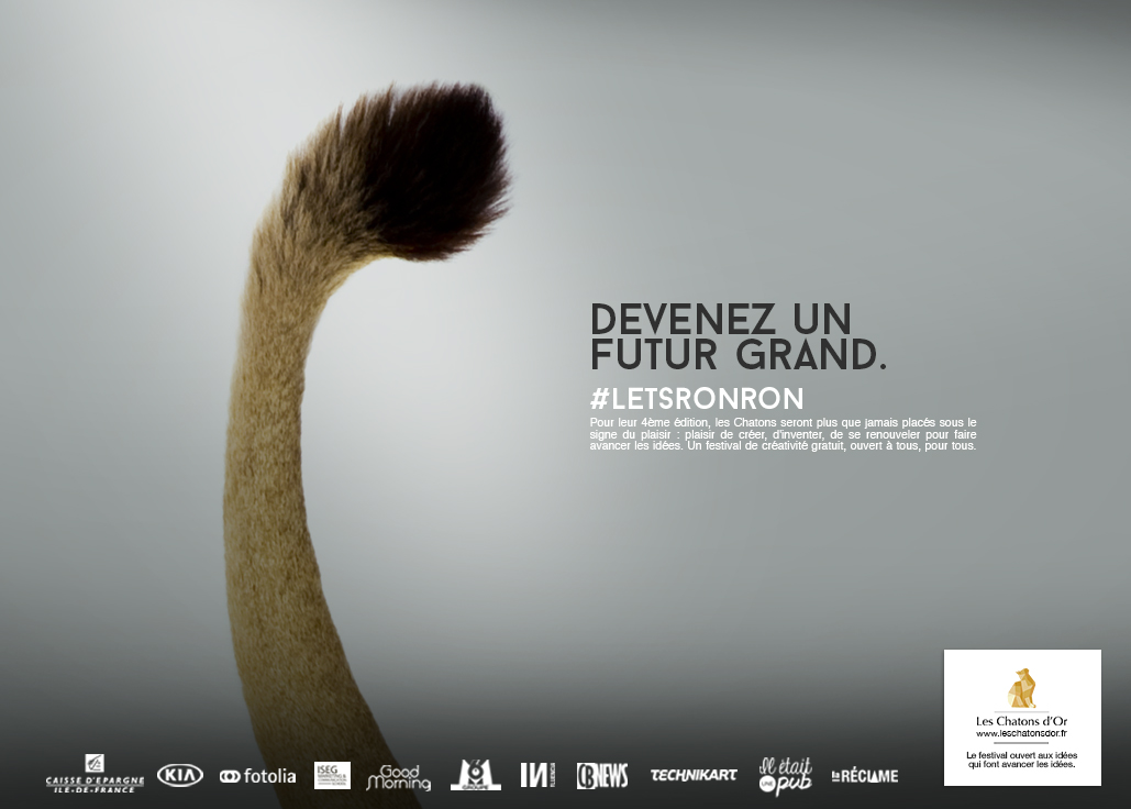 dans-ta-pub-lets-ronron-chatons-dor-2015-concours-idée-création-7