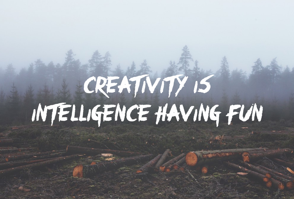 dans-ta-pub-creativity-creative-having-fun-quotes