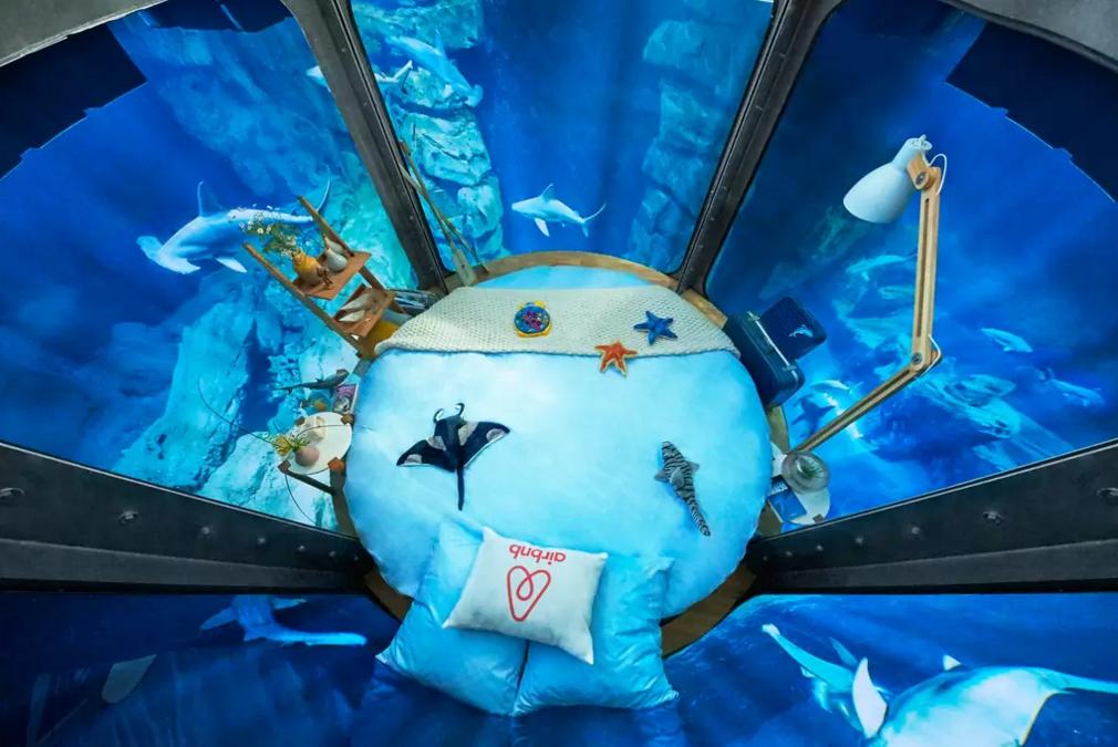 dans-ta-pub-airbnb-ubi-bene-aquarium-paris-chambre-requin-1