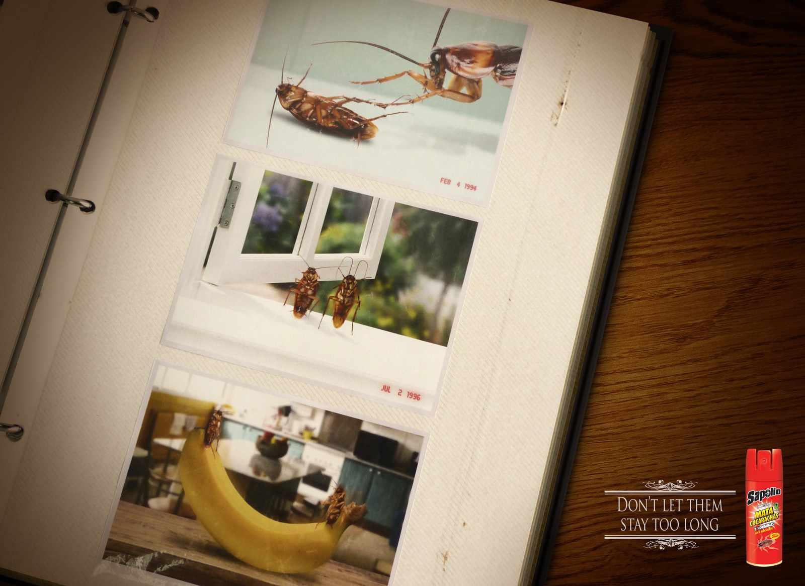 dans-ta-pub-publicite-affiche-creation-print-lundi-137-5
